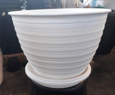 pot bunga putih