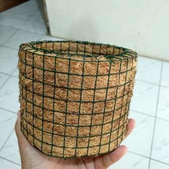 pot sabuk kelapa