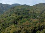 Mengunjungi Senggaang, Kampung Tua di Ujung Barat Bulukumba