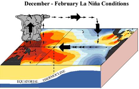El Nino, Sejarah dan Dampaknya terhadap Cuaca Global juga Lingkungan