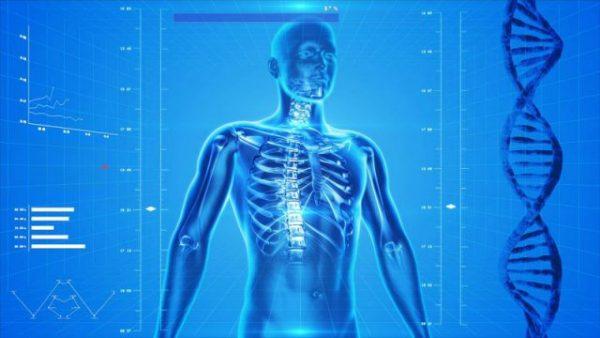tubuh manusia dominan air