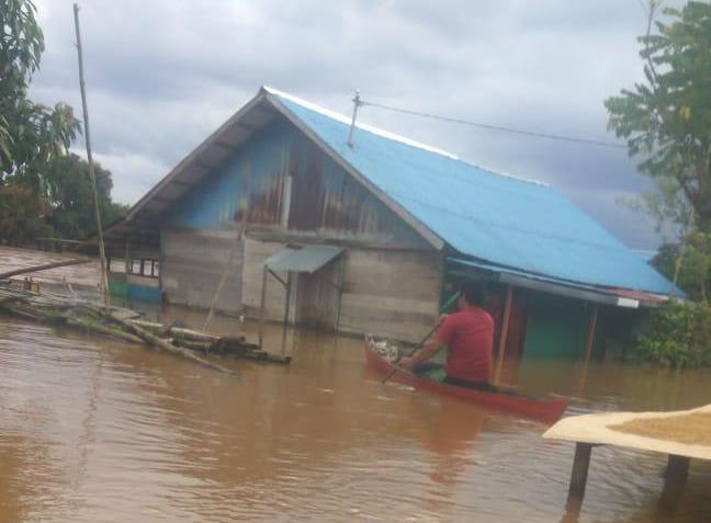 Banjir Kalsel, Akumulasi Kerusakan Lingkungan
