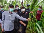 Hutan Sosial Diharapkan Dongkrak Kesejahteraan Masyarakat dengan Pembangunan Wilayah Terpadu