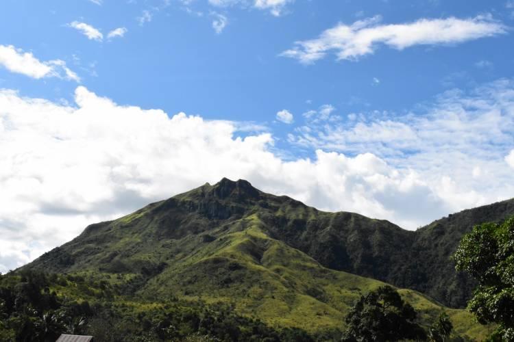 7 Fakta Keanekaragaman Hayati di Taman Nasional Gandang Dewata Mamasa