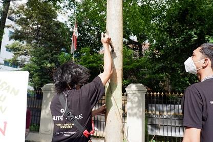 Aksi Unik Selamatkan Bumi dengan Cabut Paku di Pohon