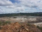 JPIK Menyoal Pernyataan Ditjen PKTL KLHK Atas Penurunan Deforestasi