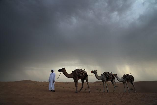 Simak 5 Sajak dari Penyair Arab yang Mengeksplorasi Alam Raya