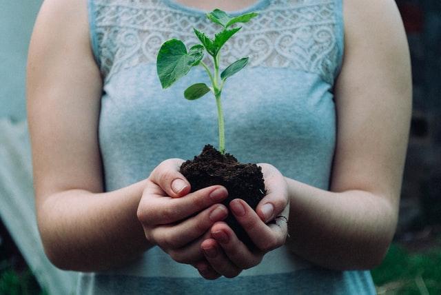 Bumi, Manusia, dan Pertobatan Ekologis
