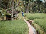 Indonesia Sejatinya Mampu Capai Netral Karbon Sebelum 2070