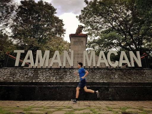 Ruang Terbuka Hijau di Makassar Kian Berkurang