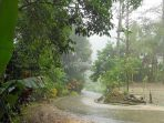 Sejak Januari, 456 Orang Meninggal Dunia Akibat Bencana di Indonesia