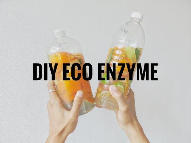 Apa Saja Sampah Organik yang Tidak Cocok untuk Bahan Eco Enzyme