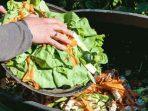 Masaro, Solusi Mudah Pengelolaan Sampah Organik