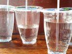Ziarah Plastik, Tradisi Baru Lebaran