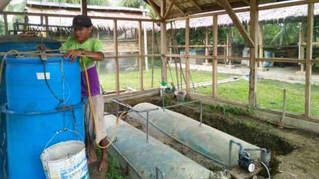 Mengintip Desa yang Melawan Kerusakan Alam dengan Transisi Energi Biogas