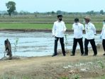 Program Food Estate Belum Mampu Atasi Ancaman Krisis Pangan saat Pandemi
