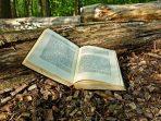40 Kata-kata Bijak tentang Lingkungan, Inspirasi Menjaga Alam Raya