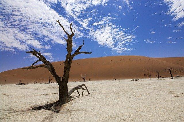 Dampak Perubahan Iklim, Warga di Madagaskar Alami Kelaparan Akut