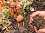 Mengenal 4 Jenis Pupuk Organik yang Lebih Ramah Lingkungan