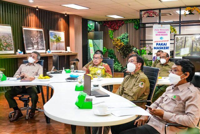 Rehabilitasi Mangrove, sebagai Pengendali Abrasi Laut hingga Atasi Perubahan Iklim